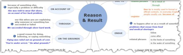 THE BLUE TREE - Reason and result - sample