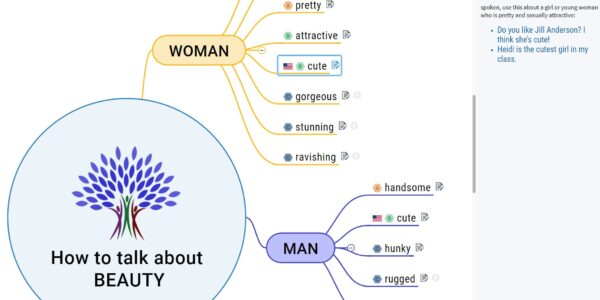 Mind map about beauty